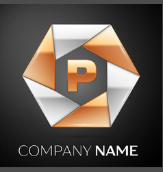letter p logo symbol in the colorful hexagon on vector image vector image