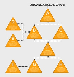 Organization chart template vector image vector image