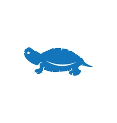 Turtle logo icon vector