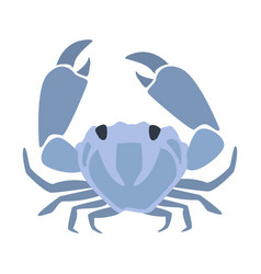 Blue crab part of mediterranean sea marine vector