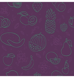 Colorful hand drawn fruits and berries vector image