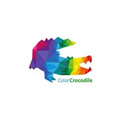 Crocodile abstract triangle design vector