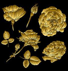 Golden roses set vector