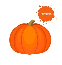 tasty and healthy vegetable pumpkin vector image
