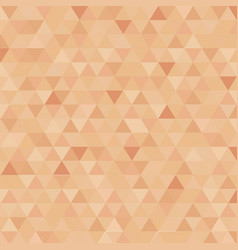 Abstract triangle censor skin color background vector