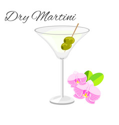 dry martini cocktail isolated on white vector image vector image