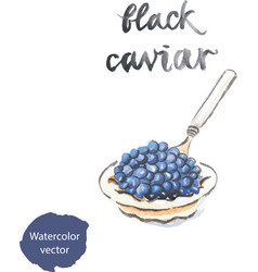 watercolor black caviar vector image