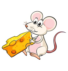 A mouse eating cheese vector