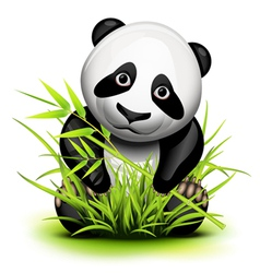 Little panda and bamboo vector image
