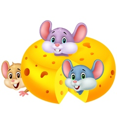 Cartoon mouse hiding inside cheddar cheese vector