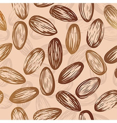 Almonds nut seamless background drawing of nuts vector