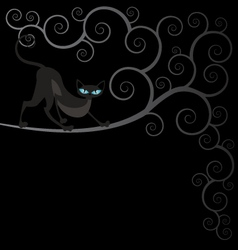 black cat on spiral tree vector image