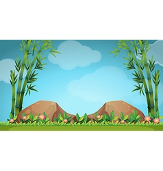 Scene with rocks and bamboo vector image