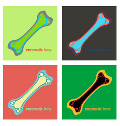 Set of flat anatomy of the long bone periosteum vector