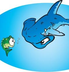 hammer head shark vector image