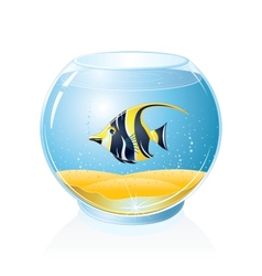Aquarium with Tropical Fish vector image