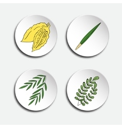 Four species for jewish holiday sukkot vector