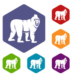 Mandrill monkey icons set hexagon vector