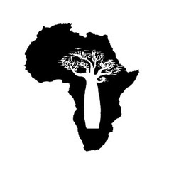 silhouette of black Africa with white baobab vector image
