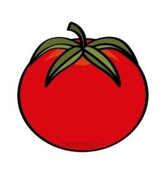 tomato vegetable pop art vector image