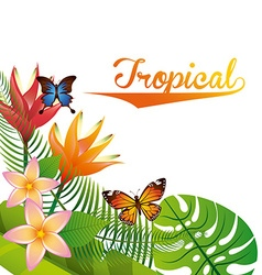 tropical nature vector image vector image