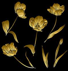 Golden tulips set vector