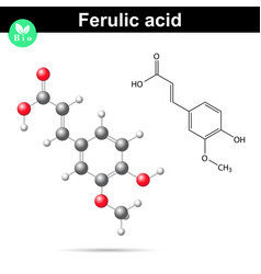 Ferulic acid chemical molecule vector