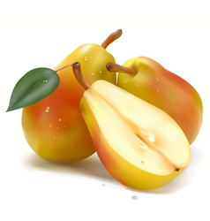 Juicy pear vector