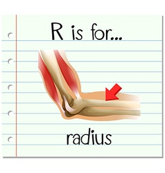 Flashcard letter r is for radius vector