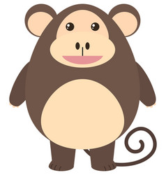 brown monkey with happy face vector image vector image