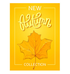 seasonal autumn poster vector image vector image
