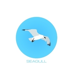 White seagull at blue sky round background vector image vector image