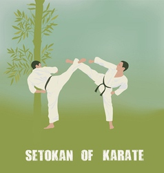 Two men are engaged in karate vector