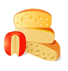 four different types of cheese on a white backgro vector image