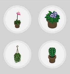 Isometric plant set of flowerpot blossom peyote vector