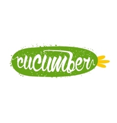 Cucumber name of vegetable written in its vector