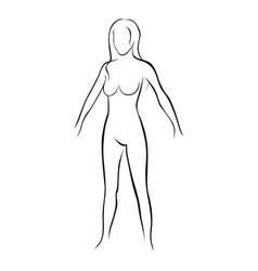 Female stylized body contour icon vector