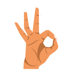 okay hand sign close up on white vector image