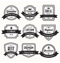 Retro vintage badges vector