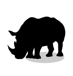 rhinoceros mammal black silhouette animal vector image vector image