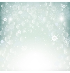 Shiny beautiful snowflakes vector