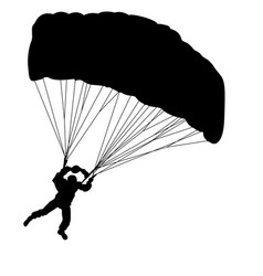 skydiver silhouettes parachuting on a white vector image