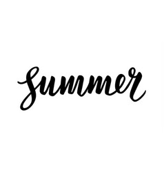 Summer calligraphic lettering vector