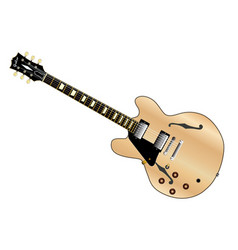 Left handed guitar vector
