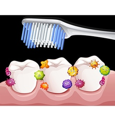 Bacteria between teeth when brushing vector