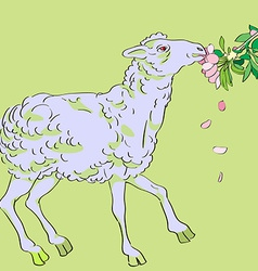 sheep eating flowers vector image vector image