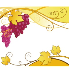 Grape vines abstract vector