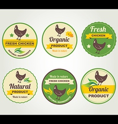 Badges chicken organic product design template vector
