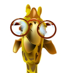 Giraffe and glasses vector image vector image