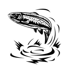 trout fish jumping vector image vector image